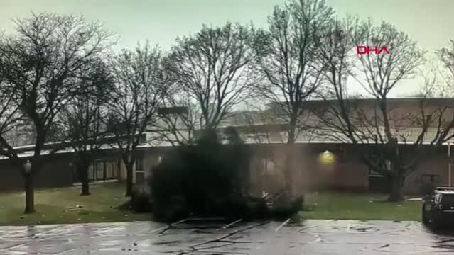 ABD'de okul bahçesinde yıldırım düşen ağaç ikiye ayrıldı