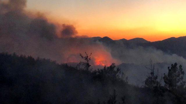 Adana'da orman yangınında 6 köy boşaltıldı, 150 hektar alan yandı