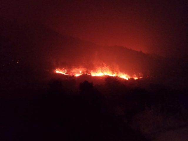 Bakan Pakdemirli: 'Hatay yangınında can kaybımız yok, müdahale devam ediyor'