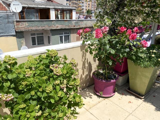Balkonunu çiçek bahçesine çeviren kanser hastası, yarışmada 1'inci oldu
