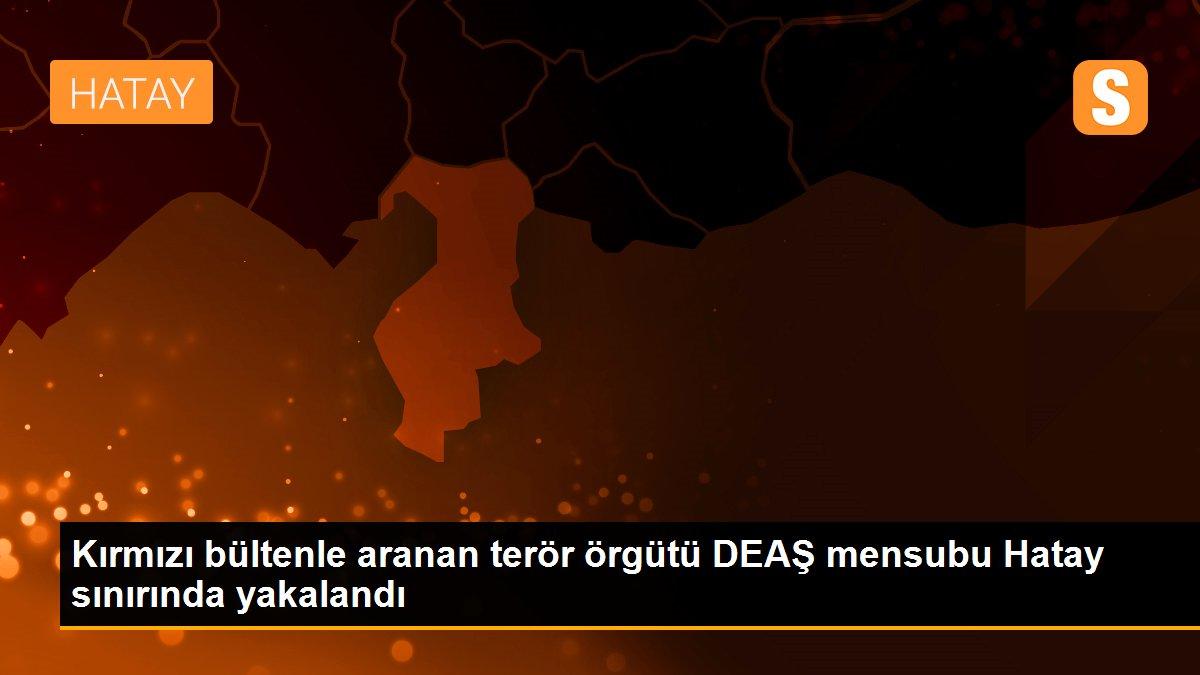 Kırmızı bültenle aranan terör örgütü DEAŞ mensubu Hatay sınırında yakalandı