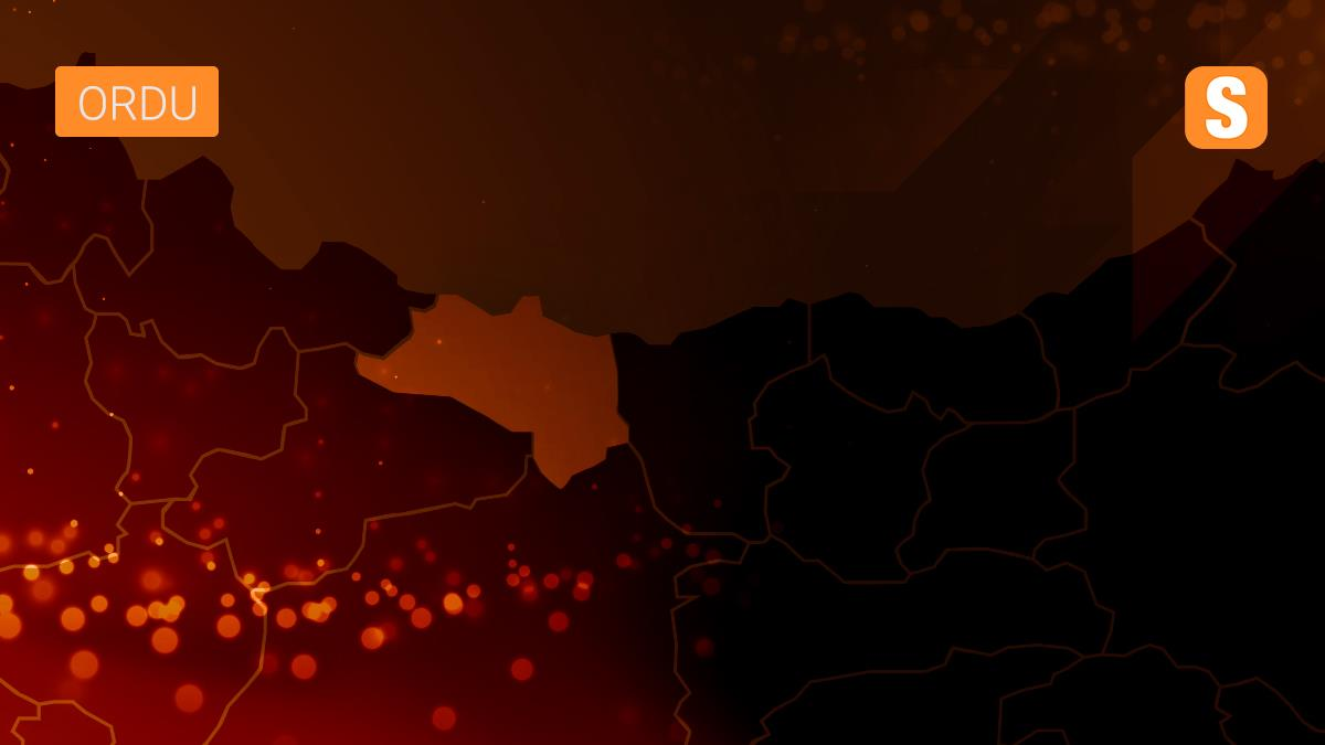 Ordu'da Kovid-19 tedbirlerine uymayan 213 kişiye ceza