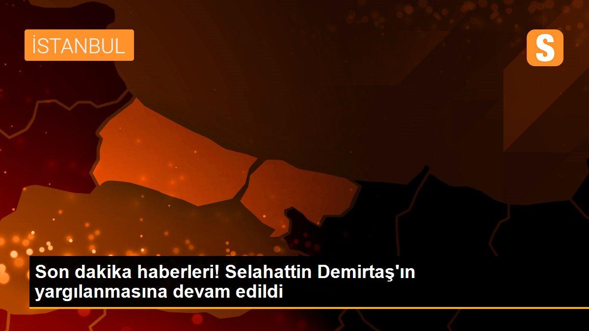 Son dakika haberleri! Selahattin Demirtaş'ın yargılanmasına devam edildi