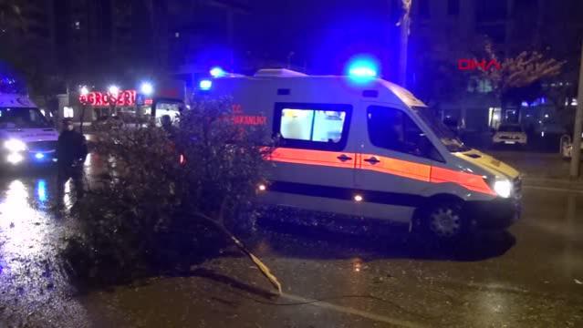 Kontrolden çıkan otomobil, ağacı devirip, takla attı 4 yaralı
