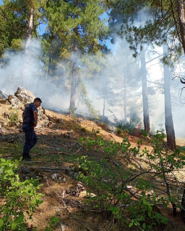 Kozan'da orman yangını (1)