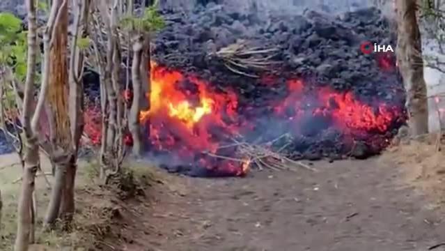 - Pacaya Yanardağı'nın püskürttüğü lavlar yerleşim yerlerine ulaştı