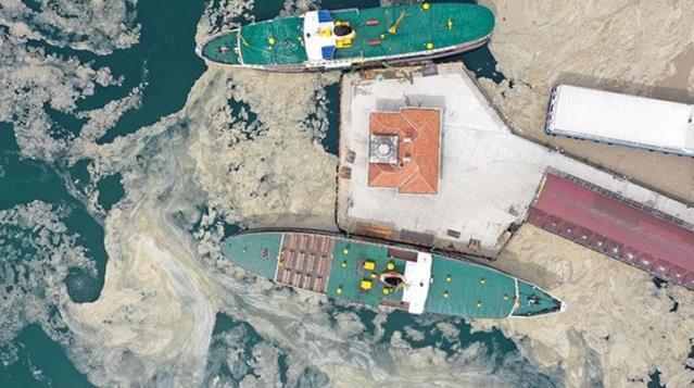 Son Dakika: Çevre ve Şehircilik Bakanlığı'ndan 7 ilimize deniz salyası konulu genelge