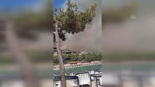Son dakika! Milas'ta orman yangını (2)