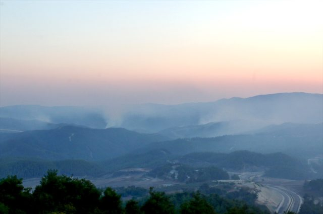 Suriye'de sınırda çıkan orman yangını Türkiye'ye sıçradı