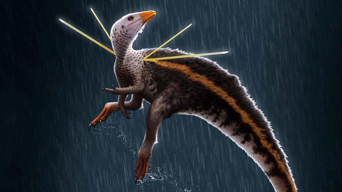110 milyon yıllık ilginç keşif! 'Doğada gördüğüm hiçbir şeye benzemiyor'
