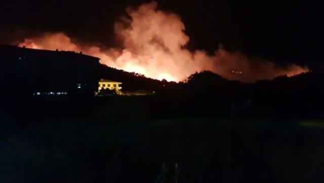 Balıkesir Ayvalık'ta orman yangını çıktı! İtfaiye ekiplerinin müdahalesi sürüyor