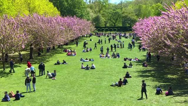 New York'lular salgına rağmen parklara akın etti
