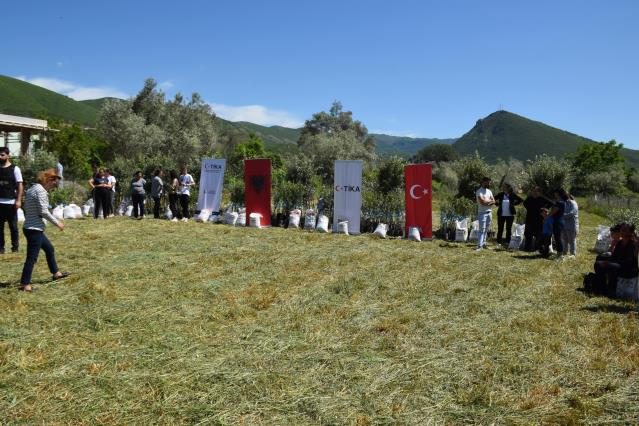 TİKA'dan Arnavutluk'a zeytin fidanı ve gübre desteği