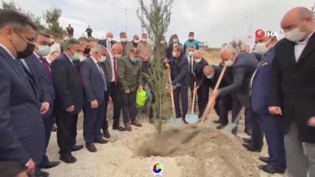 TOBB Başkanı Hisarcıklıoğlu'ndan 'Her üyemiz için bir fidan' kampanyası
