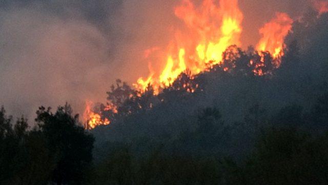 Uşak'ta iki mahalleyi tehdit eden orman yangını kontrol altına alınamadı